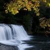 Hooker Falls - DuPont SF - North Carolina