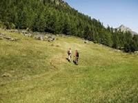 Besinnungsweg Trail
