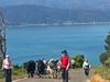 Horokiwi - Wellington - New Zealand