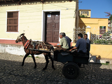 Horse And Cart Street In Trinidad