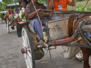 Horse Carriage Village tour in Candirejo Photos