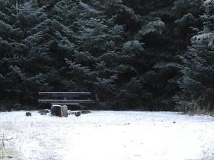 Horseshoe Hole Primitive Campsites