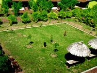 Hotel Kanha (Treasure in Forest)