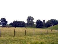 Hovgården