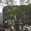 Hoxton Square Garden In The Summer
