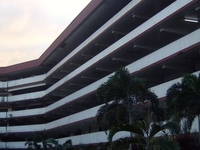 Universidad Politécnica de Filipinas