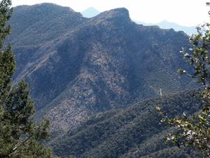 Montañas Huachuca