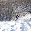 Huff Hills Ski Area