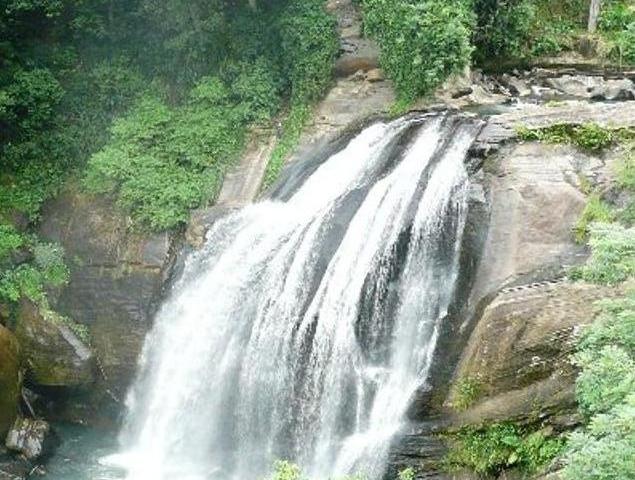 Trekking Through Beautiful Nature Trails Photos
