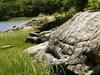 Hunter Island, Pelham Bay Park