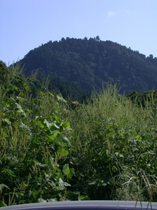Mountain On Which Hachiōji Castle Located