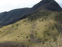 Monte Ashigara