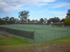 Hale Tennis