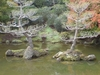 The Japanese Garden\'s Lake.