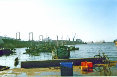 Harbour Of Vasco