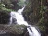 Onomea Falls Inside The Garden