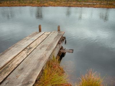 Hupassaare Bog