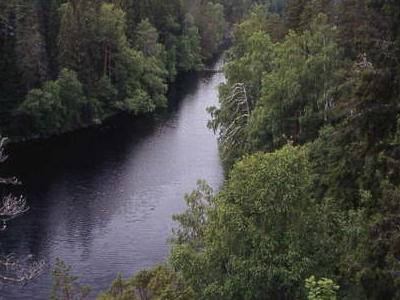 Helvetinjrvi Lake And Helvetinkolu Cleft