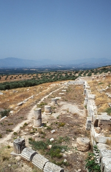 The Heraion Of Argos