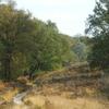 Meinweg National Park