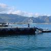 Hermanus New Harbour