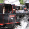 Steam Locomotive MÁV U34.901 Using By Histo Logg Back Swath Railway