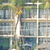 Hotel Neelakanta