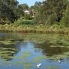 Hurstville Grove 2