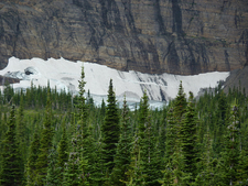 Iceberg Lake Trail Scene - Glacier - Montana - USA