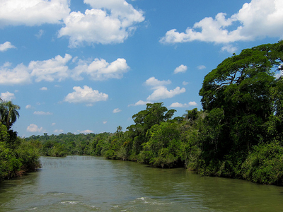 Iguazú National Park-River