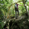 Iguazú National Park Sendero Macuco Trail