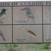 Cubbon Park Signboard - Bangalore