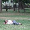 Cozy Nap At Cubbon Park - Bangalore