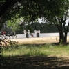 Manekshaw Parade Ground Trees With Back-Wall