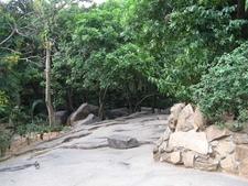 Bugle Rock Park Walkway - Bangalore