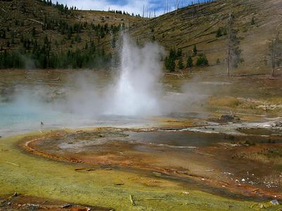 Imperial Geyser - Yellowstone - USA