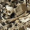 Inca Burial