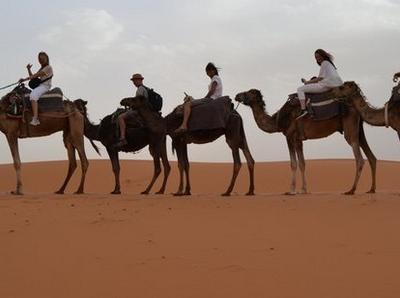 Indigo Safari Morocco Tours
