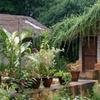 WelcomHeritage Bandhavgarh Jungle Lodge