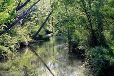 Inside Shikellamy State Park PA