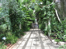 Inside The Temperate House