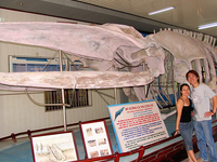 Instituto de Oceanografia