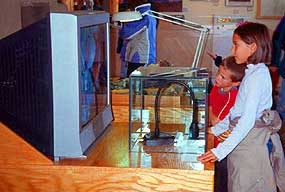 Interactive Exhibits At The Visitor Center