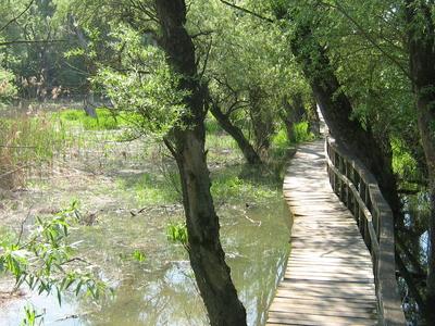 Inundation Area Of Vác