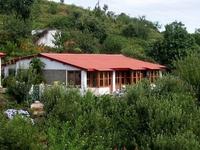 Mountain Trail Resort