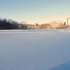 Inwood Hill Park With Snow Covering The Ground