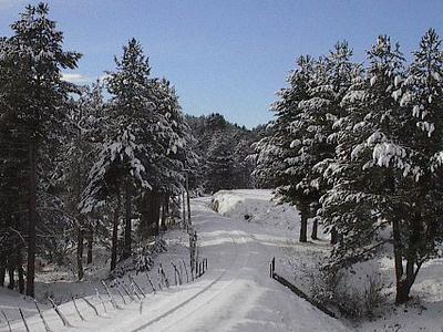 La Sila National Park