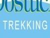 Dostuck Trekking Logo