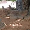 Idol Of Mahishasuramardhini In Mirjan Fort