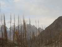 Hunza valley Tour (Tour to Heaven on Earth)